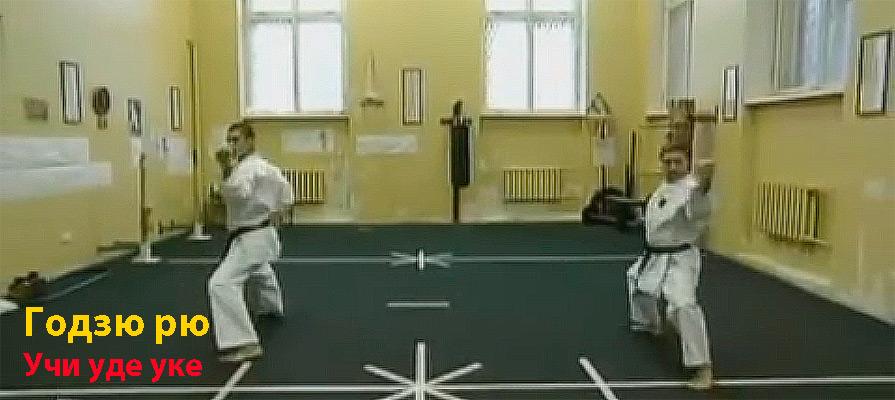 годзюрю1