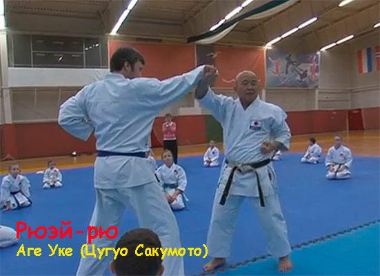 Рюэй-рю,-Цугуо-Сакумото