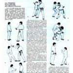 Самооборона по школе «Чой» (часть 2) Защита от ударов руками, ножами и бутылкой