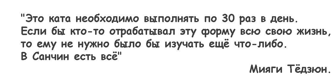 сантин11
