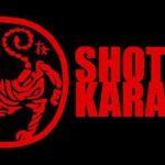 Шотокан Каратэ — обучающие материалы (часть третья) Семинары
