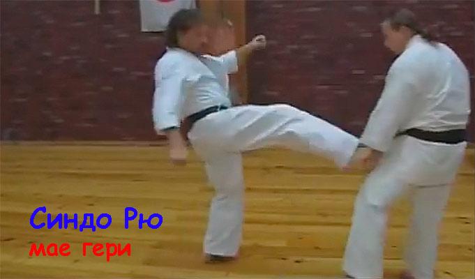 синдо_рю