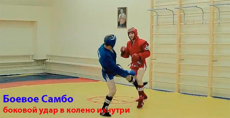боевое_самбо1