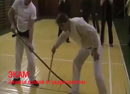 Московский семинар А Н Кольцова по системе ЭКАМ